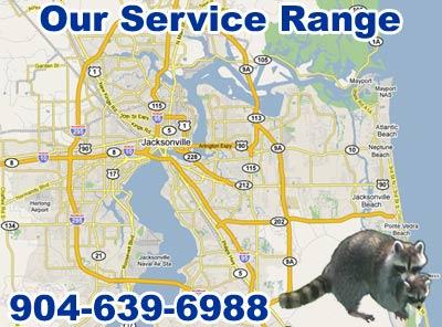 Jacksonville Wildlife Pest Control